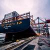 澳洲海运公司 梨花木家具海运澳洲价格 沙发海运
