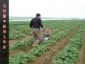 小型开沟培土机多少钱一台开土机生姜开沟培土机大葱开沟机