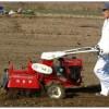 开沟培土机哪个牌子好开沟培土机供应价格开沟培土机视频