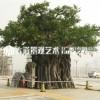 仿真榕树 大型定制假树 商场布景假榕树 室内装饰实木